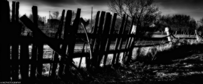 the-last-fence-standing